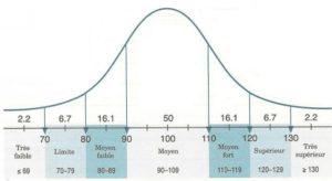 bilan psychométrique QI wisc hérault à pézenas ou béziers